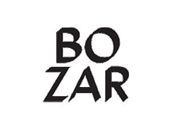 BOZAR - Centre for Fine Arts Brussels
