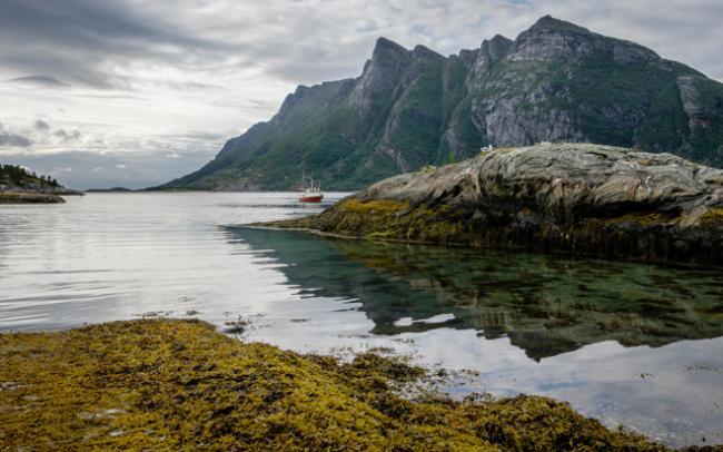 Nordic Inspirations